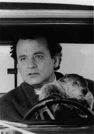 Bill Murray in 'Groundhog Day'